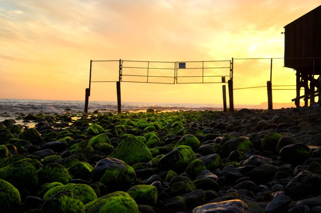 Malibu fence
