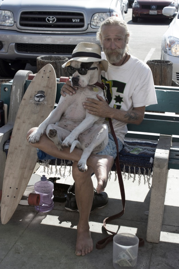 Dog lab in venice beach