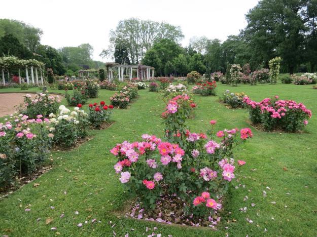 Garden in Lyon